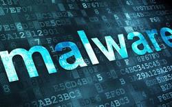 Việt Nam có khoảng 4,7 triệu địa chỉ IP thường xuyên nằm trong các mạng mã độc cực lớn