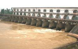 """Nguồn nước sông Cầu Đỏ nhiễm mặn, Dawaco gửi thông báo """"sử dụng nước tiết kiệm""""!"""