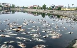 Nghệ An: Ô nhiễm hồ điều hòa tiền tỷ, cá chết trắng bốc mùi hôi thối