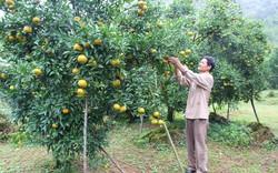 Thủ tướng yêu cầu Cao Bằng cần tập trung đột phá phát triển 3 thế mạnh