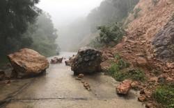 Khuyến cáo du khách hạn chế lên bán đảo Sơn Trà, Đà Nẵng thời điểm này
