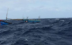 Sóng lớn đánh chìm tàu cá chở 16 thuyền viên trên biển Vũng Tàu