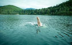 Đánh giá sai về độ sâu, du khách gãy cổ khi lặn tại hồ bơi Thái Lan