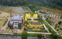 Chủ tịch UBND TP Hà Nội nói về vi phạm đất rừng Sóc Sơn