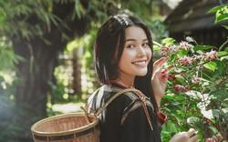 Thành tích của H'Hen Niê tại Hoa hậu Hoàn vũ thành động lực để H'Bella ghi danh ở đấu trường sắc đẹp