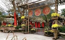 Nhiều hoạt động văn hóa, du lịch hấp dẫn chào năm mới diễn ra ở Quảng Bình