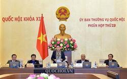 Thủ tướng phân công nhiệm vụ triển khai kết luận của Ủy ban Thường vụ Quốc hội tại Phiên họp thứ 29