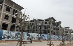 Phó Thủ tướng Trương Hòa Bình yêu cầu thanh tra việc cấp đất Dự án Khai Sơn City
