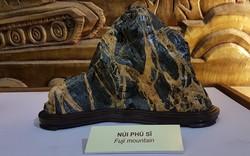 Những tác phẩm đá cảnh thiên nhiên đạt giải vàng trong các cuộc thi nhiều tỉnh, thành cùng