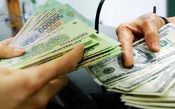 Nghệ An: Bị phạt 40 triệu đồng vì mua bán trái phép 100 USD