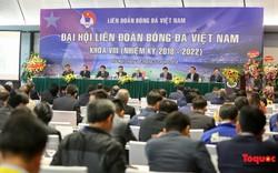 Hôm nay, Liên đoàn Bóng đá Việt Nam khóa VIII sẽ chính thức có Chủ tịch mới
