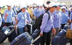 Xuất khẩu lao động Việt Nam 2019: những cánh cửa rộng mở