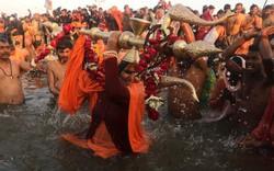 Độc đáo Lễ hội Kumbh Mela ở Ấn Độ 2019