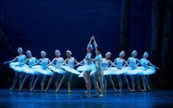 Năm 2019, Nhà hát Nhạc Vũ Kịch Việt Nam sẽ dàn dựng hoàn chỉnh vở ballet cổ điển