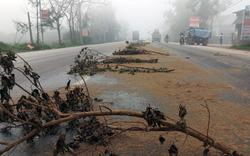 Nghệ An: Dầu ăn đổ ra đường trải dài hơn 10km, ô tô lật nhào