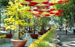 Trưng bày hơn 800 tác phẩm tại Hội Hoa Xuân Nha Trang - Khánh Hòa