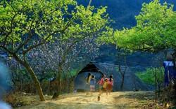 Phê duyệt quy hoạch chung xây dựng Khu du lịch quốc gia Mộc Châu đến năm 2030