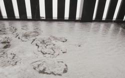 Hiện tượng lạ: Mưa và tuyết cùng xuất hiện trên đỉnh Fansipan