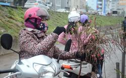 Bất chấp mưa lạnh, người Hà Nội vẫn tìm về chợ hoa Quảng Bá để chơi đào sớm