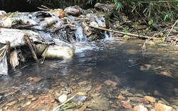 Dầu lẫn vào trong nguồn nước mà không có thiết bị lọc, xử lý thì nó sẽ tồn tại mãi