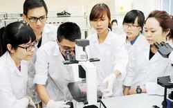 ĐH Bách khoa Hà Nội đứng đầu về nhóm giảng dạy-nghiên cứu khoa học