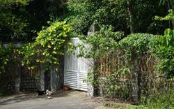 Cử tri Đà Nẵng muốn làm rõ thông tin về lô biệt thự L09 trên bán đảo Sơn Trà