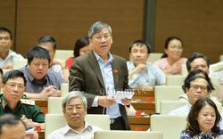 Đại biểu Nguyễn Anh Trí: