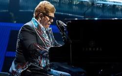 Elton John bất ngờ hoãn concert vì lý do sức khoẻ