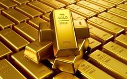 Giá vàng ngày 31/10:  Chấm dứt đà giảm giá, nhưng tăng không cao