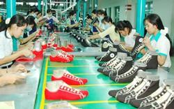 Tổ chức Hội nghị thúc đẩy phát triển ngành dệt may, da giầy