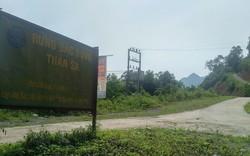 Phó Thủ tướng Trương Hòa Bình tiếp tục chỉ đạo làm rõ vụ xâm hại rừng đặc dụng Thần Sa