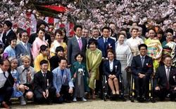 Lý do Chính phủ Nhật Bản hủy tiệc ngắm hoa anh đào 2020
