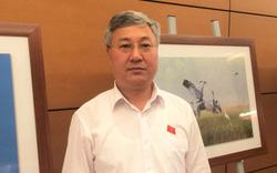 """ĐBQH Trần Văn Lâm: Tránh góc nhìn """"thiên kiến"""" về doanh nghiệp tư nhân"""