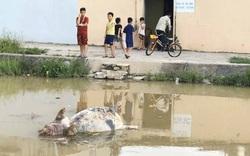 Bài 2: Vụ nước Kênh Bắc bị ô nhiễm: Không có quan trắc nước tự động, làm sao biết chất lượng nước?