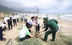 Vinamilk trồng cây xanh góp phần chống biến đổi khí hậu tại Bình Định