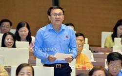 Đại biểu Quốc hội đề nghị xây dựng Luật Thư viện trường học dựa trên nền tảng Luật Thư viện