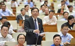 Sáng nay, Bộ trưởng NN&PTNT Nguyễn Xuân Cường là người đầu tiên đăng đàn trả lời chất vấn trước Quốc hội