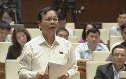 Giá cà phê thấp lẹt đẹt suốt 10 năm, Đại biểu Quốc hội đề nghị Bộ trưởng giúp nông dân