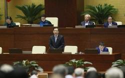 Bộ trưởng Nguyễn Xuân Cường hứa năm nay