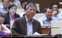 Đại biểu Nguyễn Anh Trí: Mong Bộ trưởng đừng thờ ơ với vấn đề xuất xứ hàng hóa