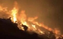 Đốt pháo hoa để chụp ảnh gây cháy 7.000m2 rừng
