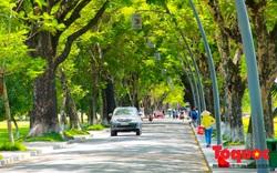 Cuộc sống trong lành ở thành phố xanh đầu tiên của Việt Nam