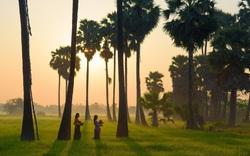 Loạt nơi nghỉ dưỡng độc đáo Đông Nam Á sắp ra mắt năm 2020