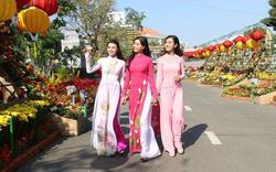 Đường hoa nghệ thuật Cần Thơ được làm thành từ hơn 80.000 chậu hoa tươi