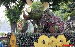 Hà Nội làm heo 'khổng lồ' bằng cây xanh đón Tết Kỷ Hợi 2019