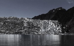 Các nghệ sĩ nỗ lực đóng góp chống biến đổi khí hậu