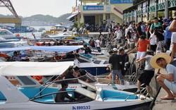 10 doanh nghiệp lữ hành thống nhất giá tour đảo vịnh Nha Trang