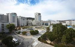 Học bổng miễn phí học tiếng Hàn và học phí toàn phần dành cho sinh viên quốc tế