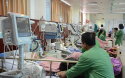 Xuân ấm áp cho các bệnh nhân phải ở lại bệnh viện