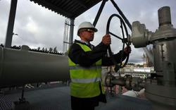 Pháp, Đức mở cửa với thế trận năng lượng Nga?